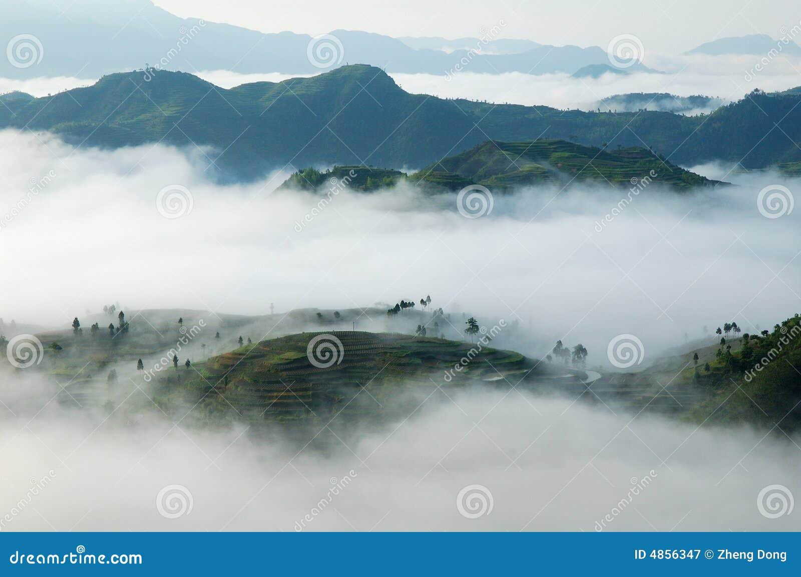 Het overzees van de wolk