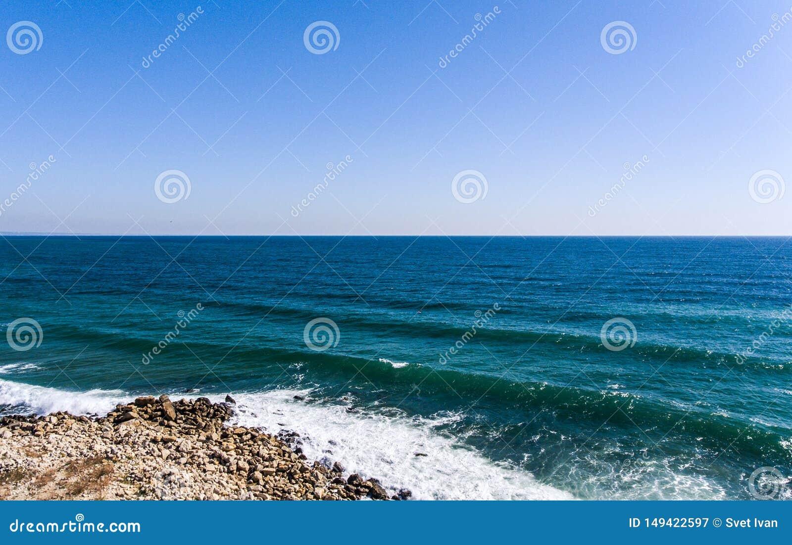 Het overzeese strandhommel van Bulgary birdseye