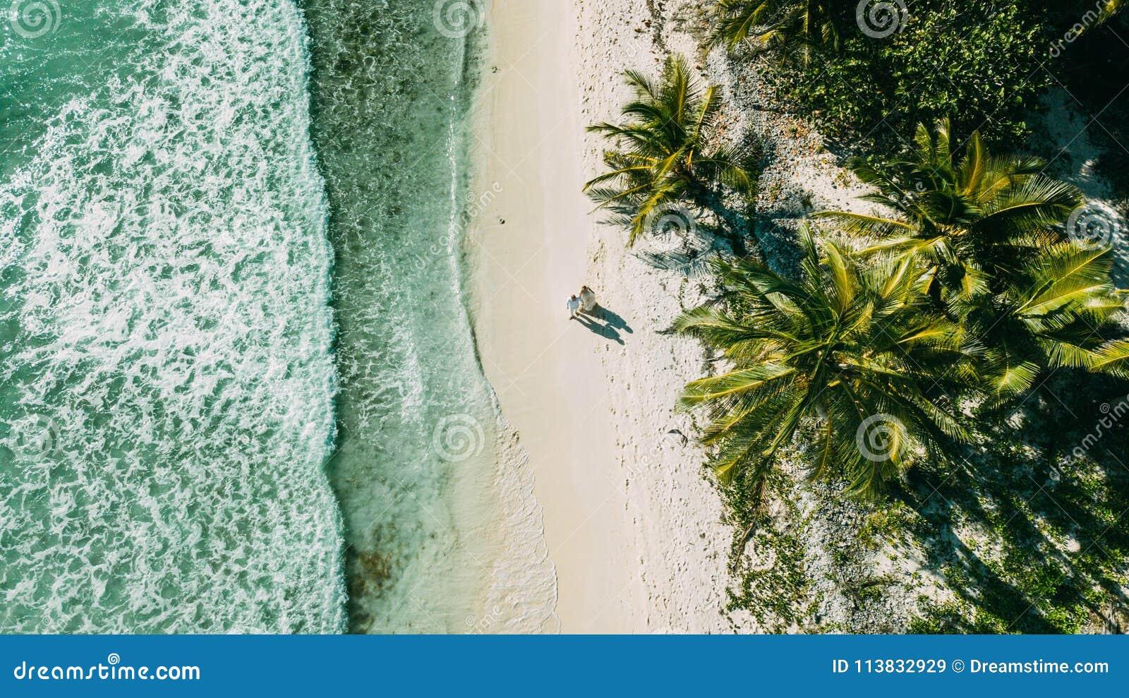 Het paar loopt op het strand tussen de oceaan en de palmen