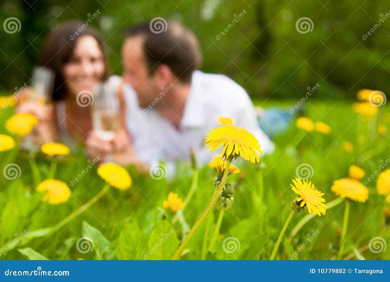 Het paar van het park