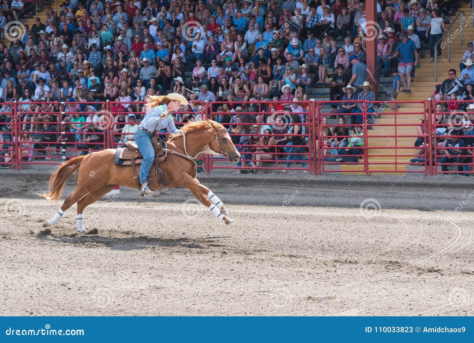 Het paard en de ruiter galopperen om lijn van vatras in Williams Lake Stampede te beëindigen