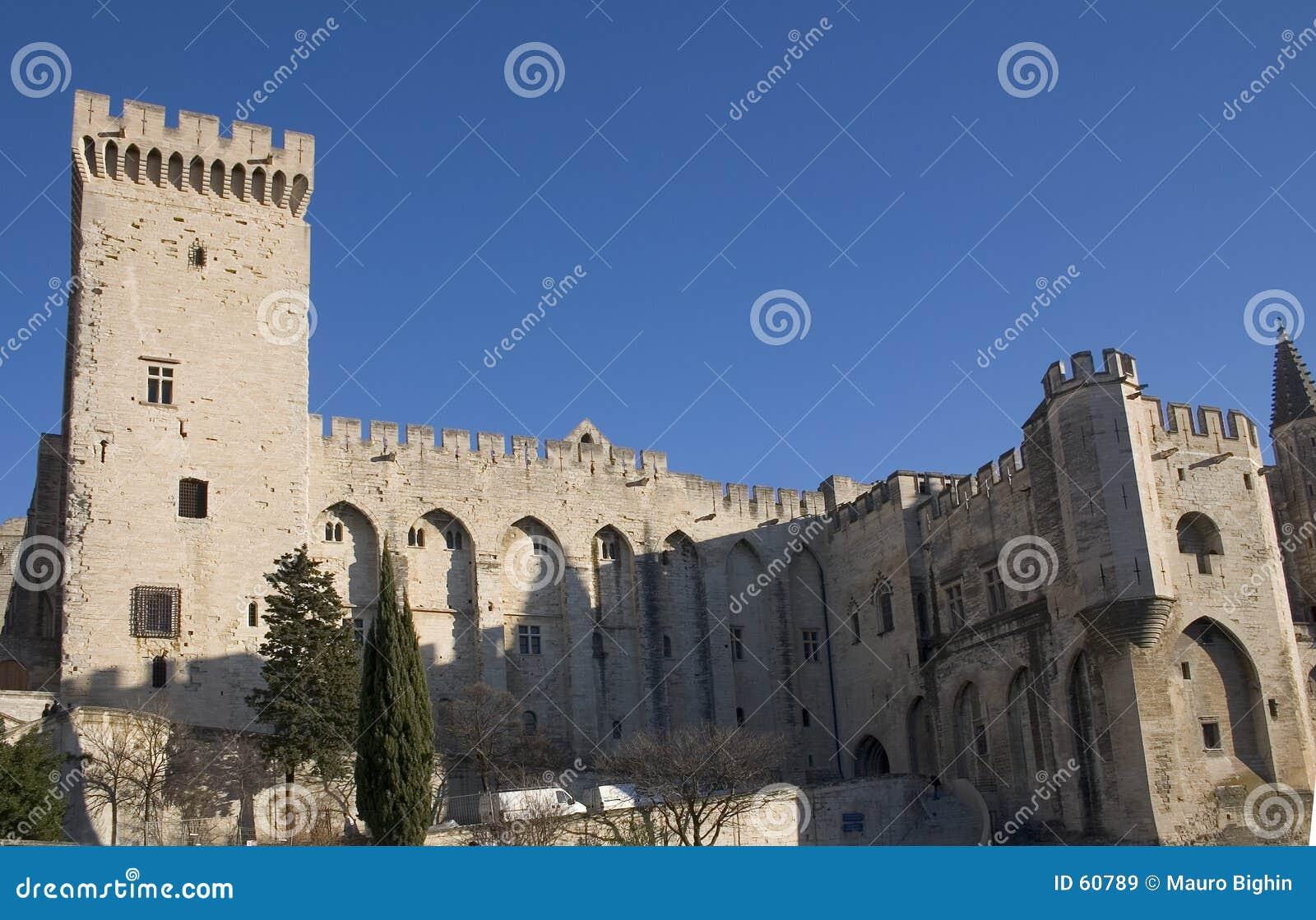 Het Paleis van pausen - Avignon - Frankrijk