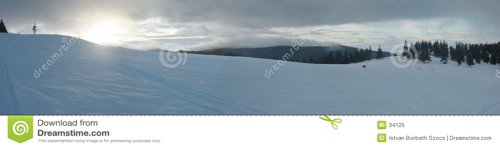 Het Panorama van de Zonsopgang van de winter