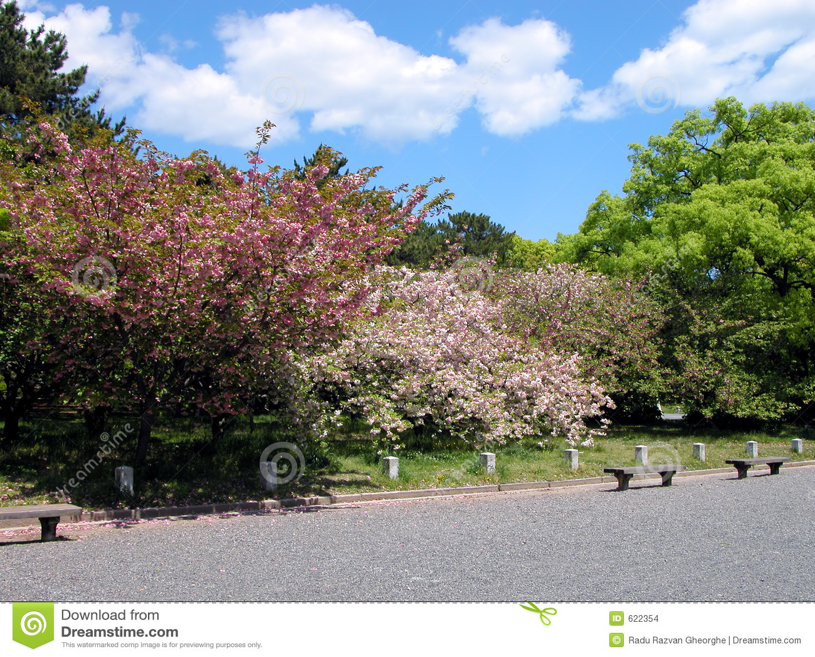 Het park van de lente