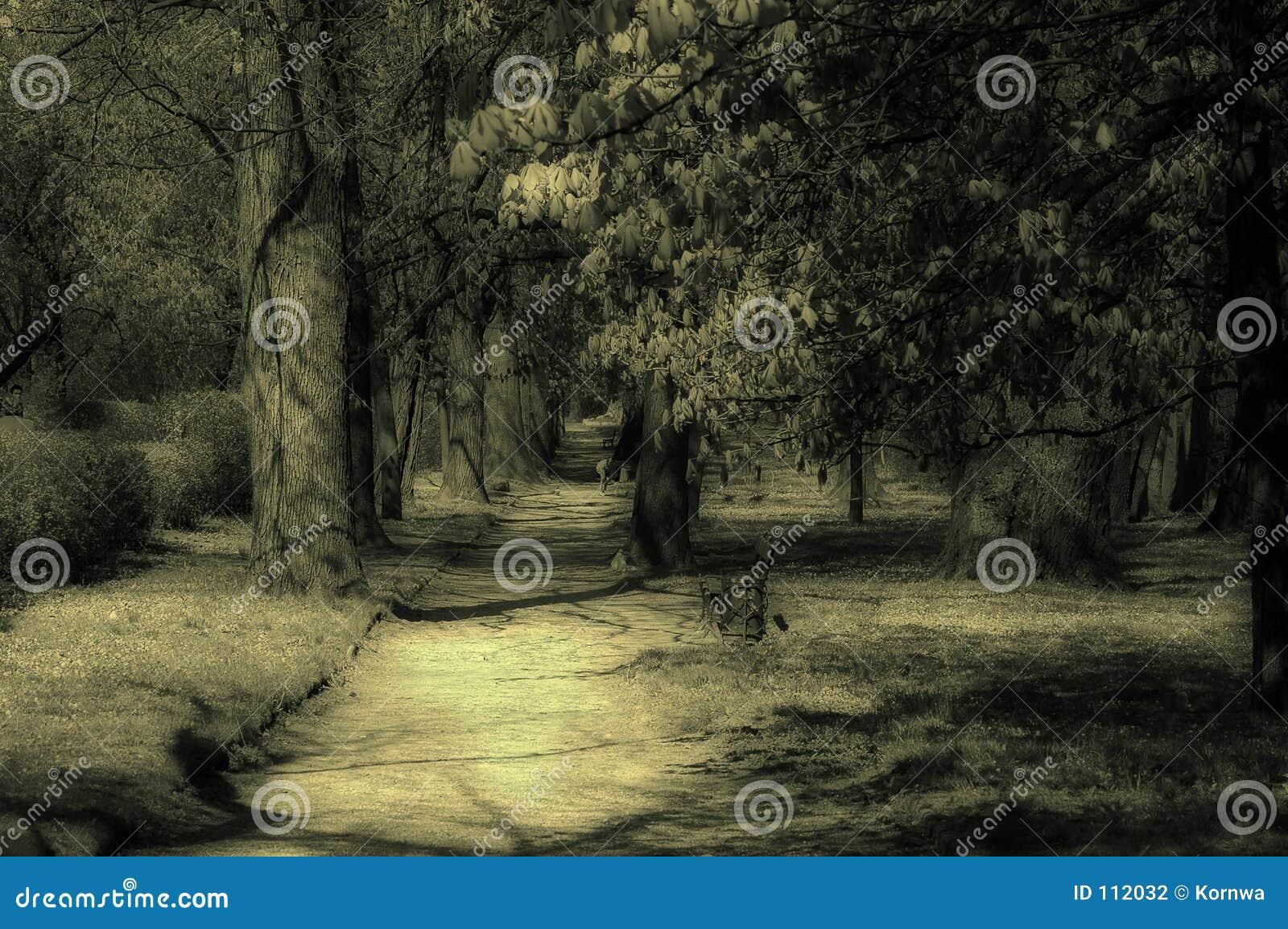 Het park van de mysticus