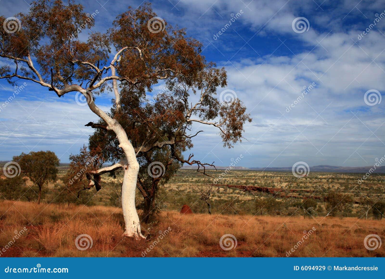 Het Park van Karijini, Pilbara, Australië