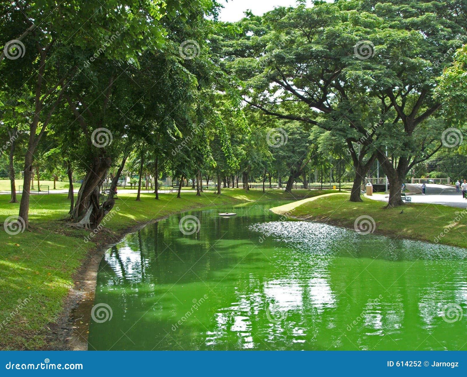 Het Park van Lumpini