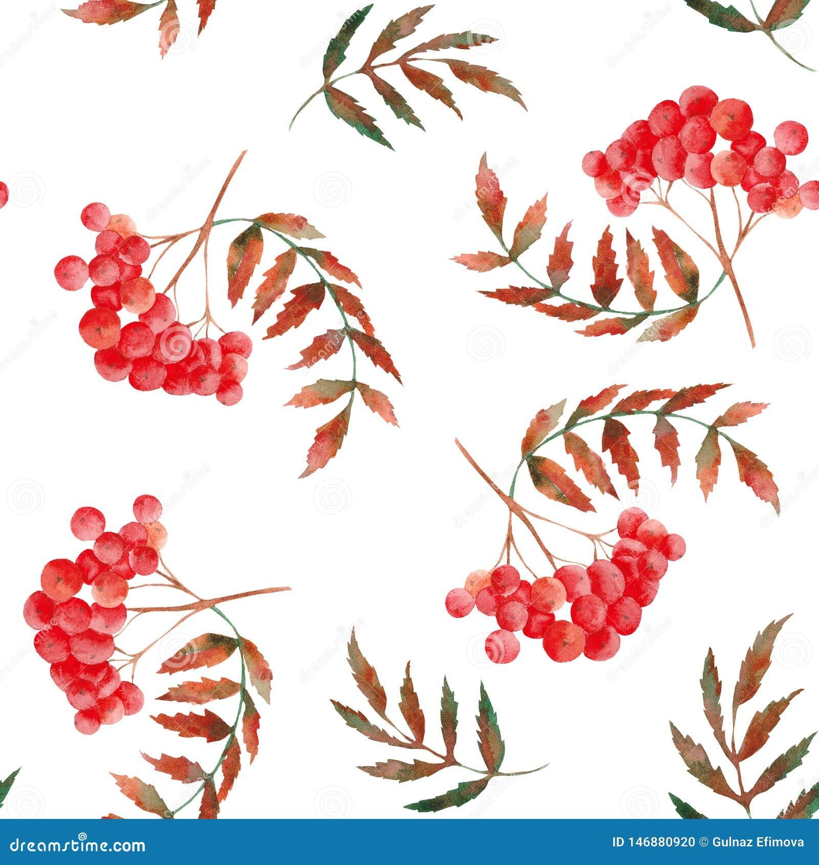 Het patroon van de waterverfherfst met lijsterbes, bladeren, paddestoelen, appelen, kegels, bloemen en bessen