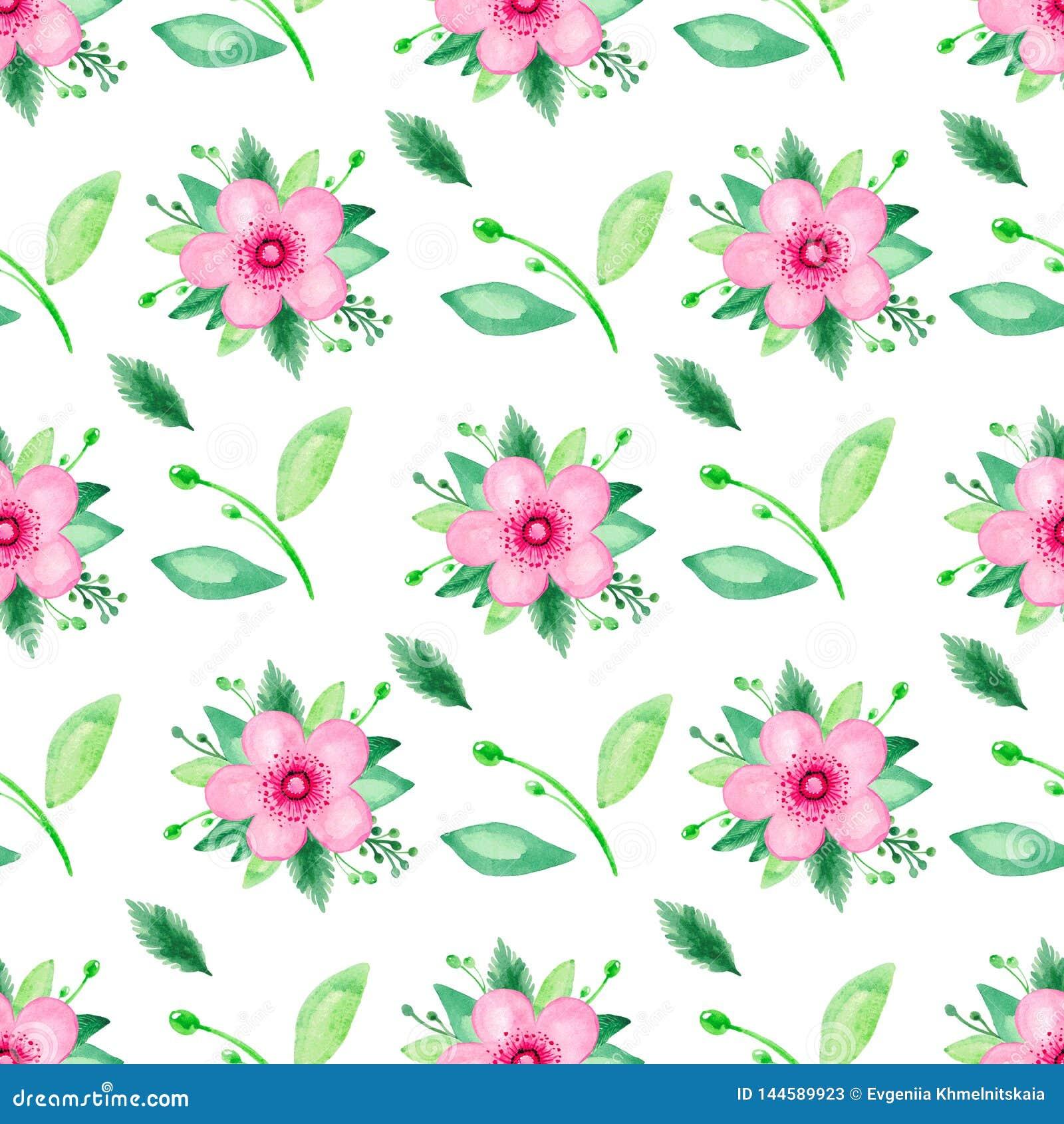 Het patroon van de waterverfillustratie naadloos van roze bloeiende kers nam Bloemenreeks op witte achtergrond toe