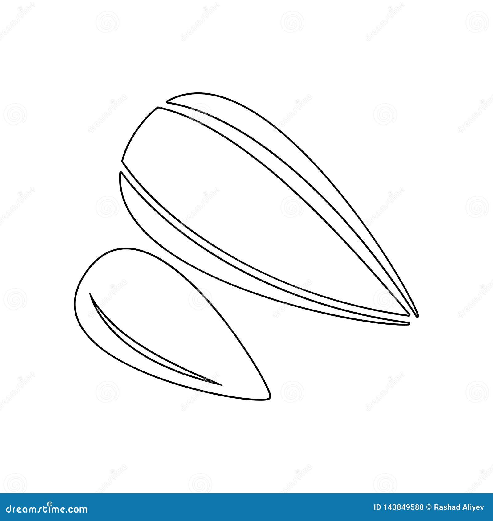 Het pictogram van zonnebloemzaden Element van noten voor mobiel concept en webtoepassingenpictogram Overzicht, dun lijnpictogram