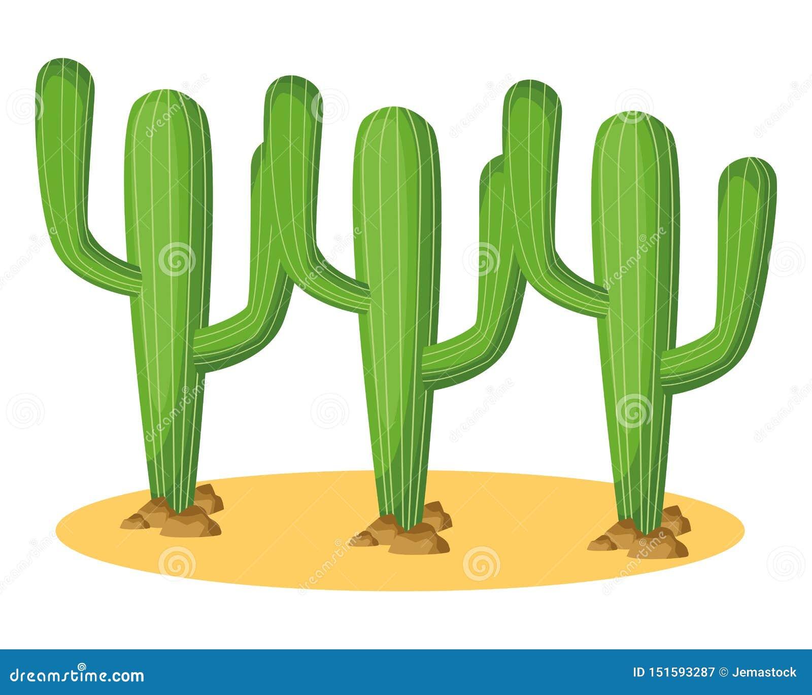 Het pictogrambeeldverhaal van de drie cactusinstallatie