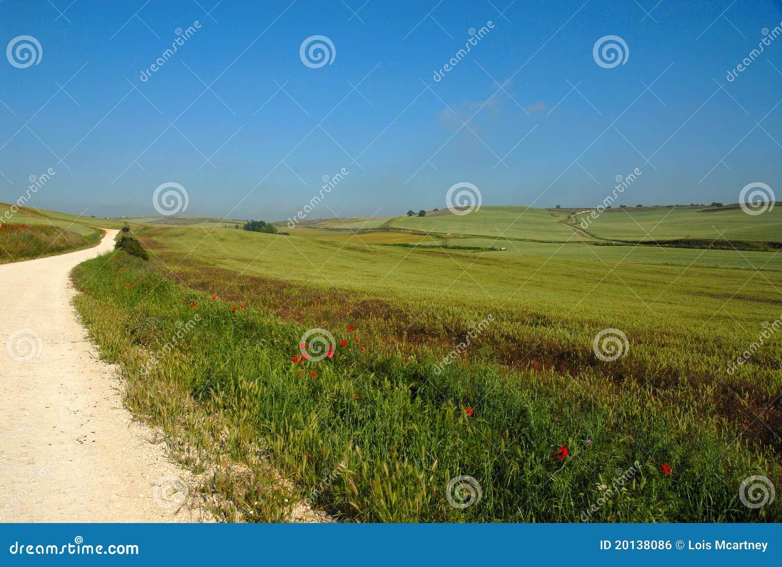 Het platteland Spanje van Camino DE Santiago