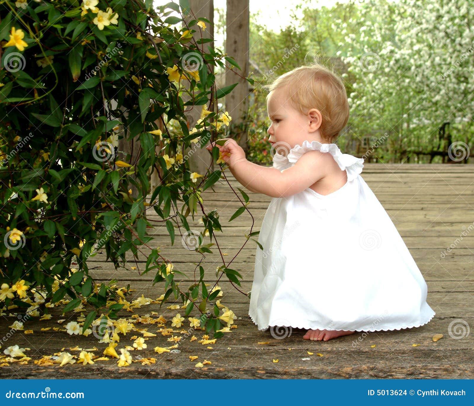Het plukken Bloemen
