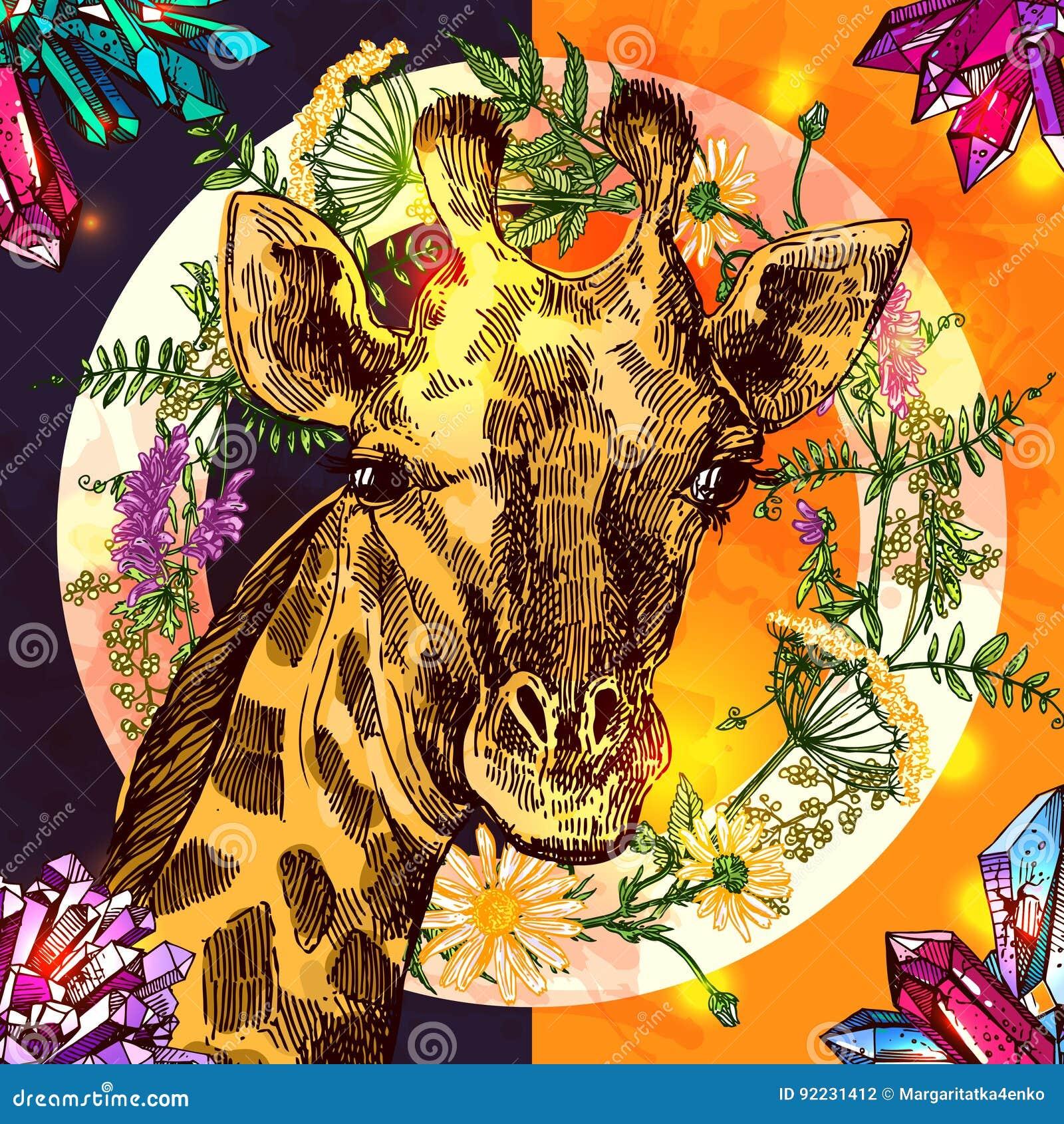 Het portret og giraf van de Beautfulhand getrokken illustratie