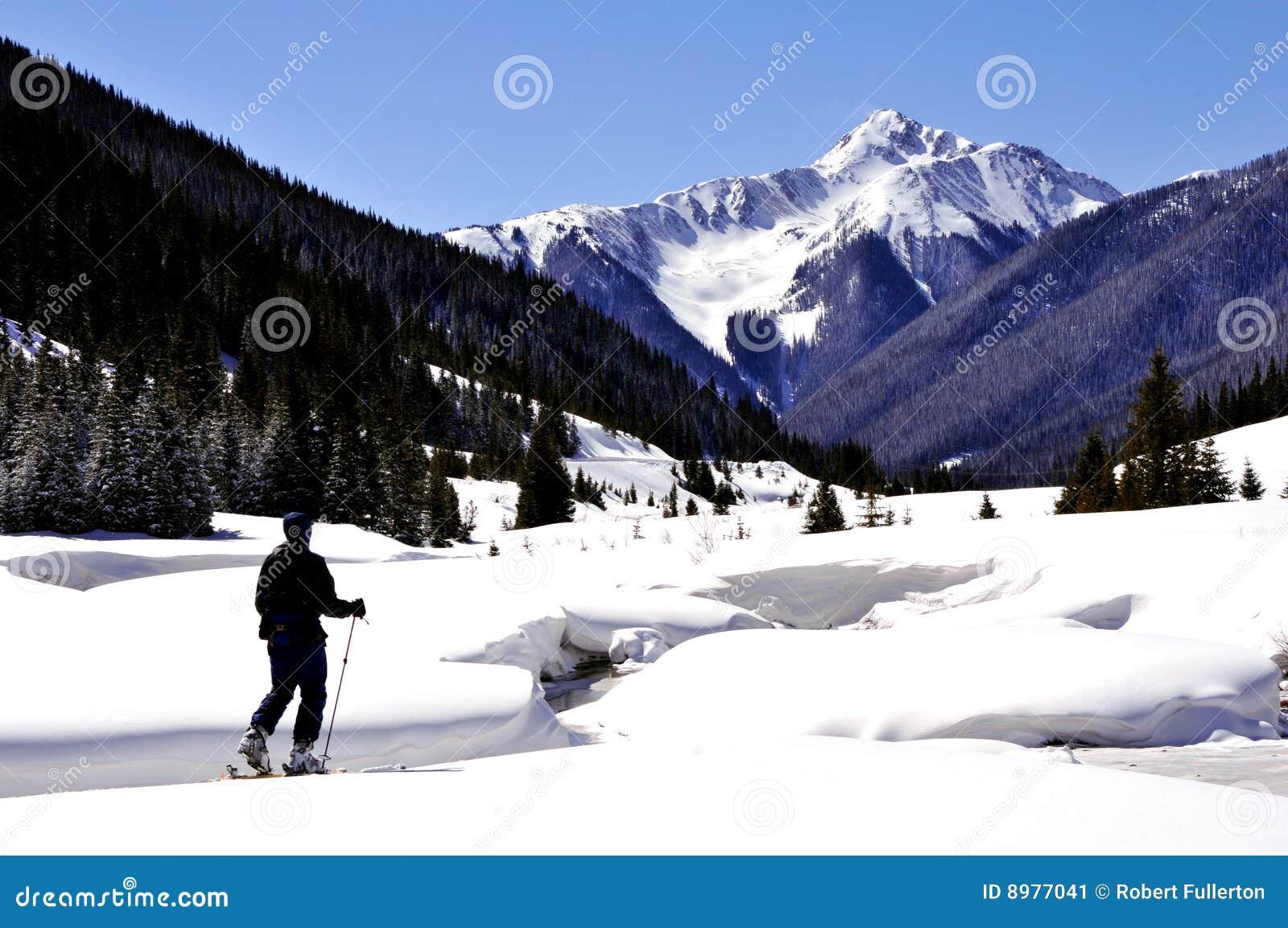 Het Reizen van de Ski van het Binnenland
