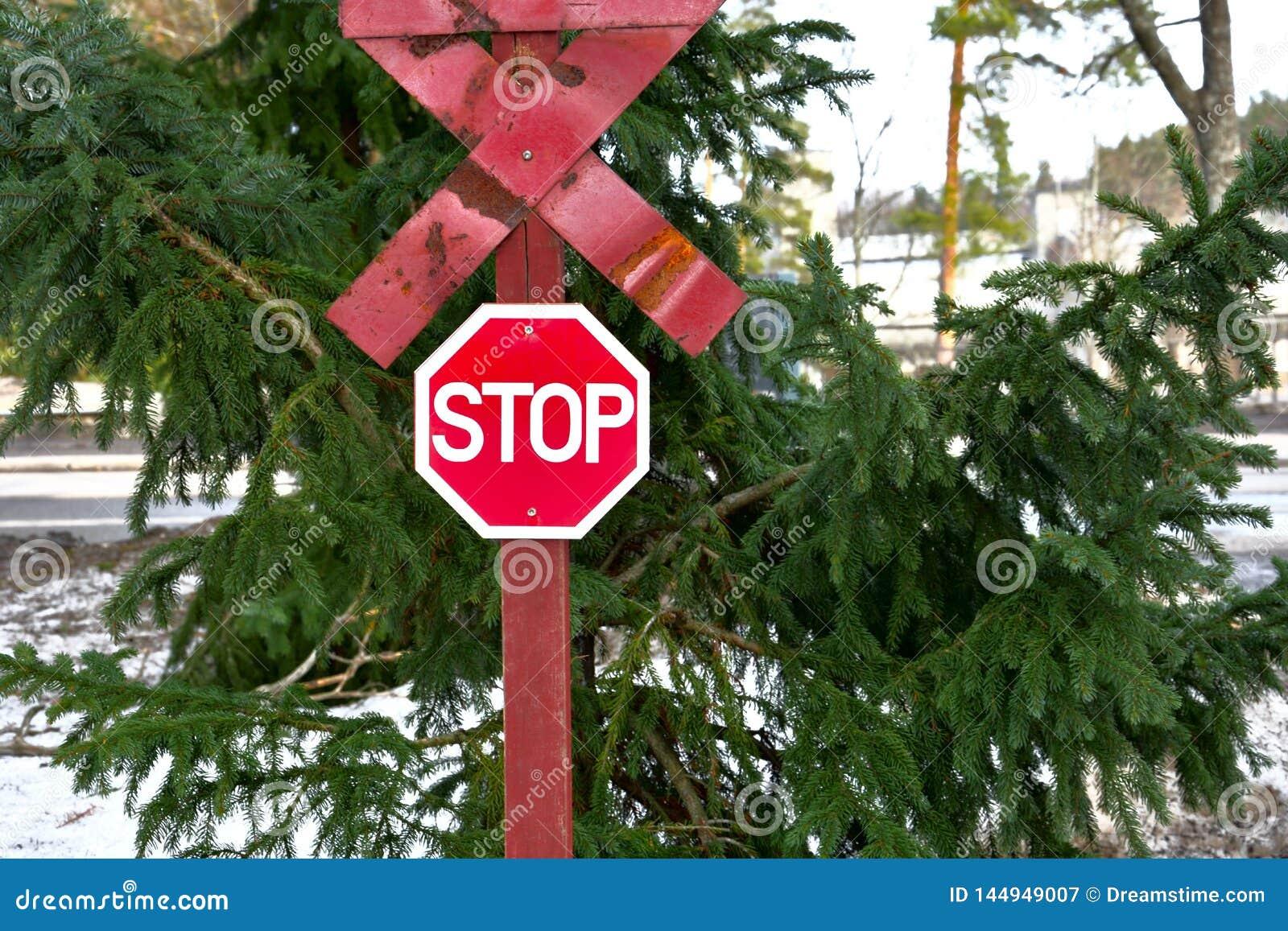 Het rode eind van het einde traffiic teken van de weg voor de groene bosboom in de winter