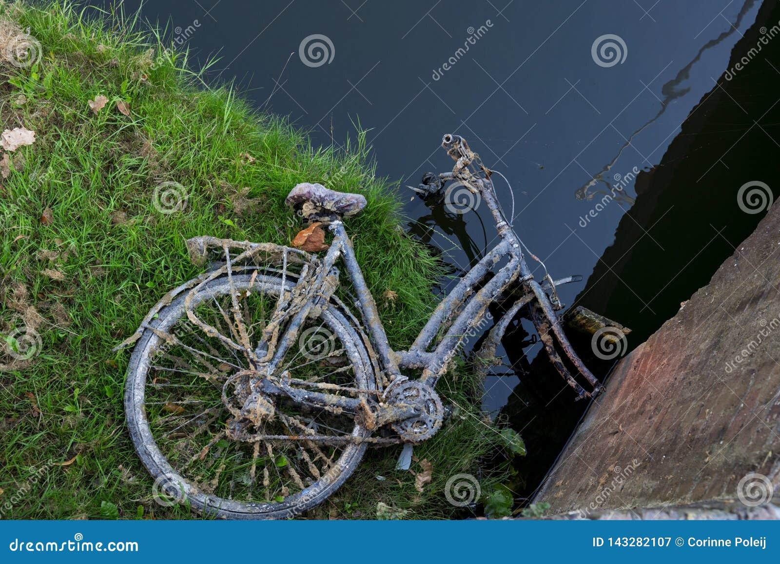 Het roestige oude fiets liggen verlaten op gebied, langs water