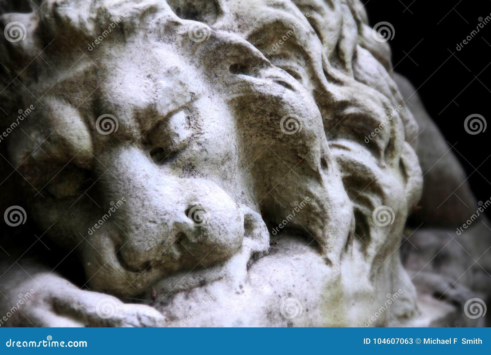 Het rusten leeuw