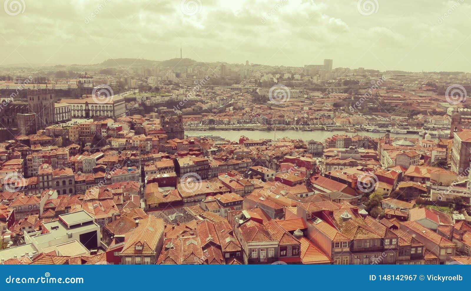 Het satellietbeeld en het landschap van Porto
