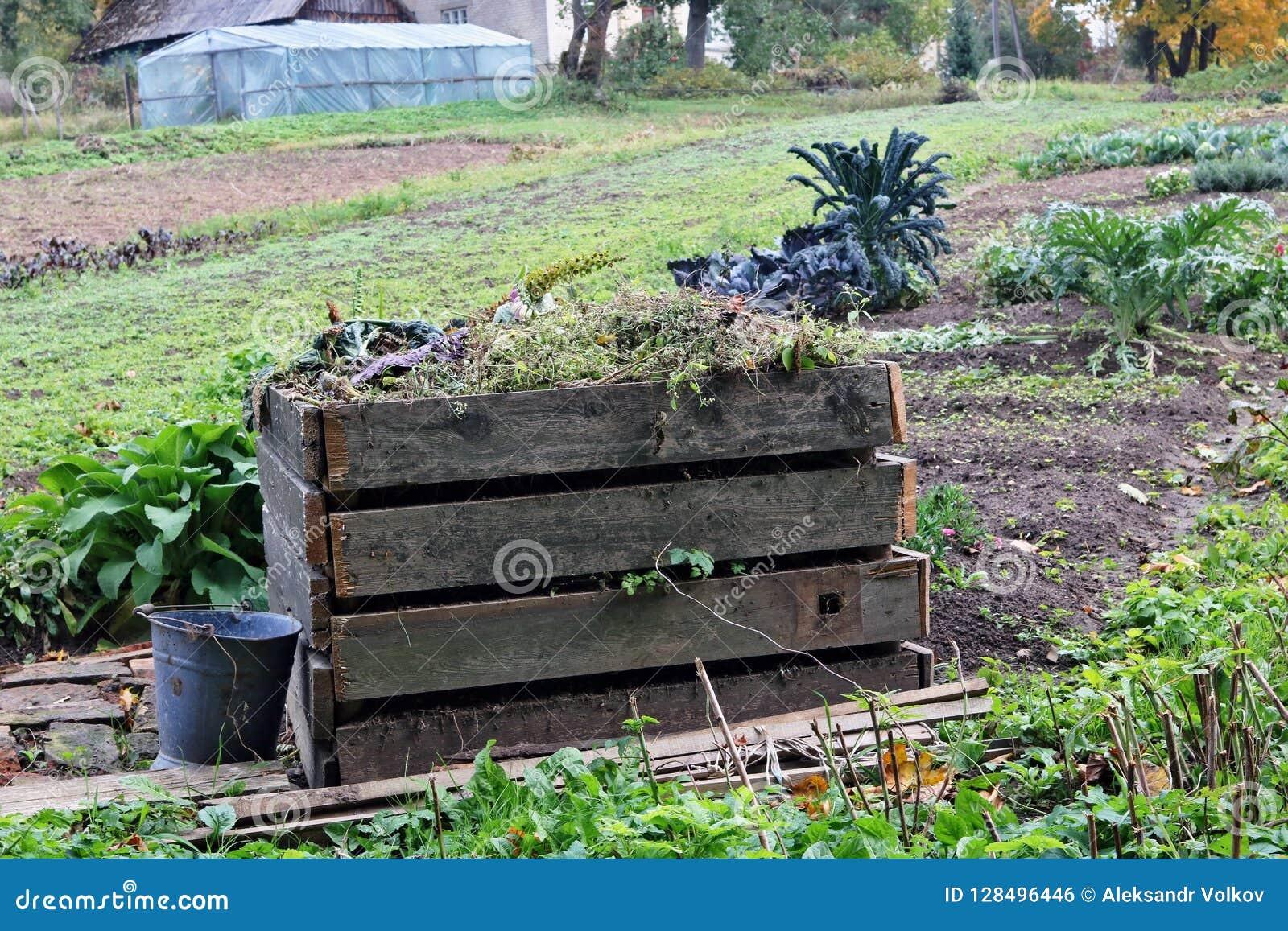 Het seizoengebonden werk in het concept van de de herfsttuin Container voor houten