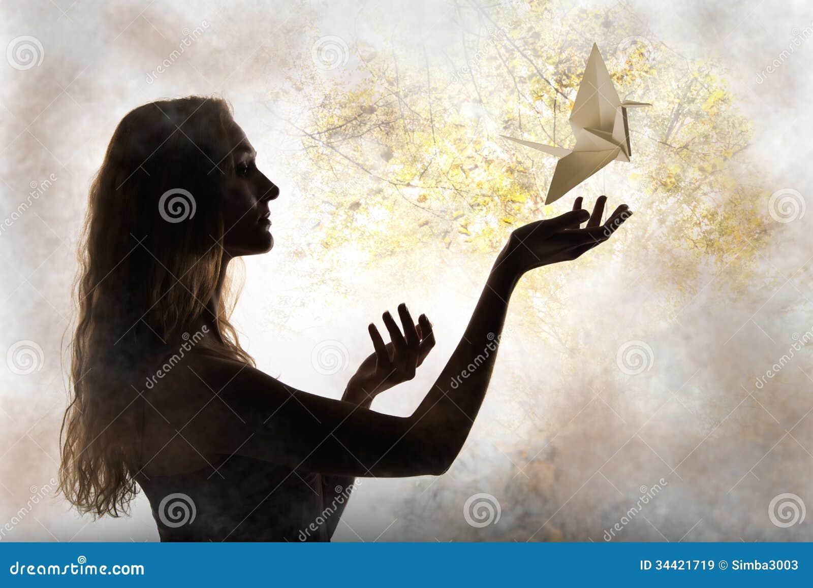Het silhouet van de schoonheidsvrouw met vliegende document kraan