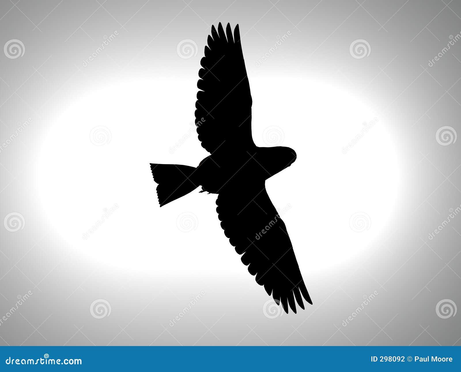 Het Silhouet van de vogel