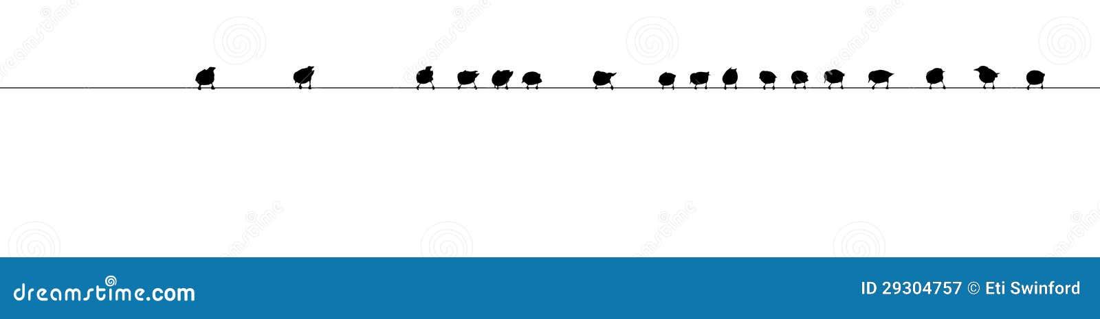 Het silhouet van de vogel op draad