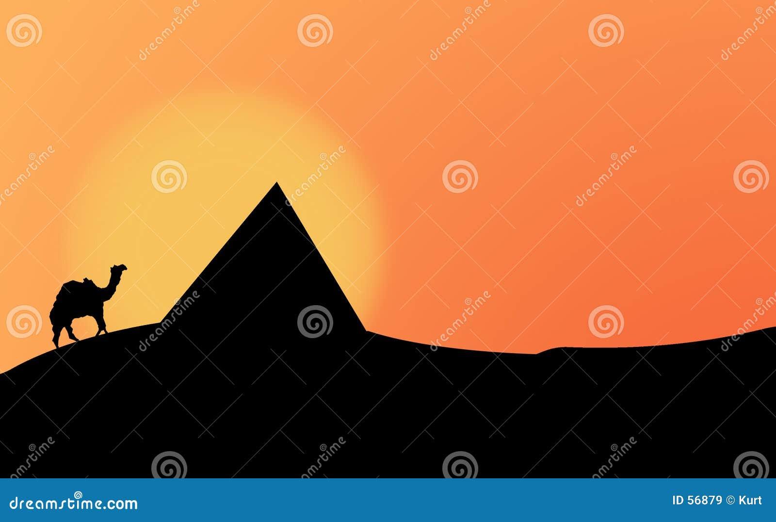 Het silhouet van de woestijn