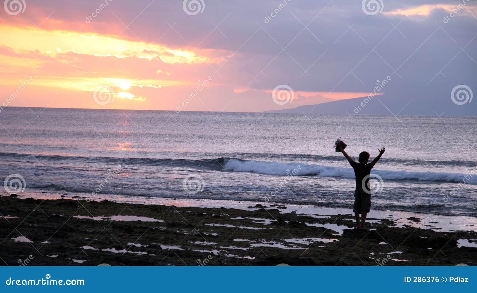 Het silhouet van het strand