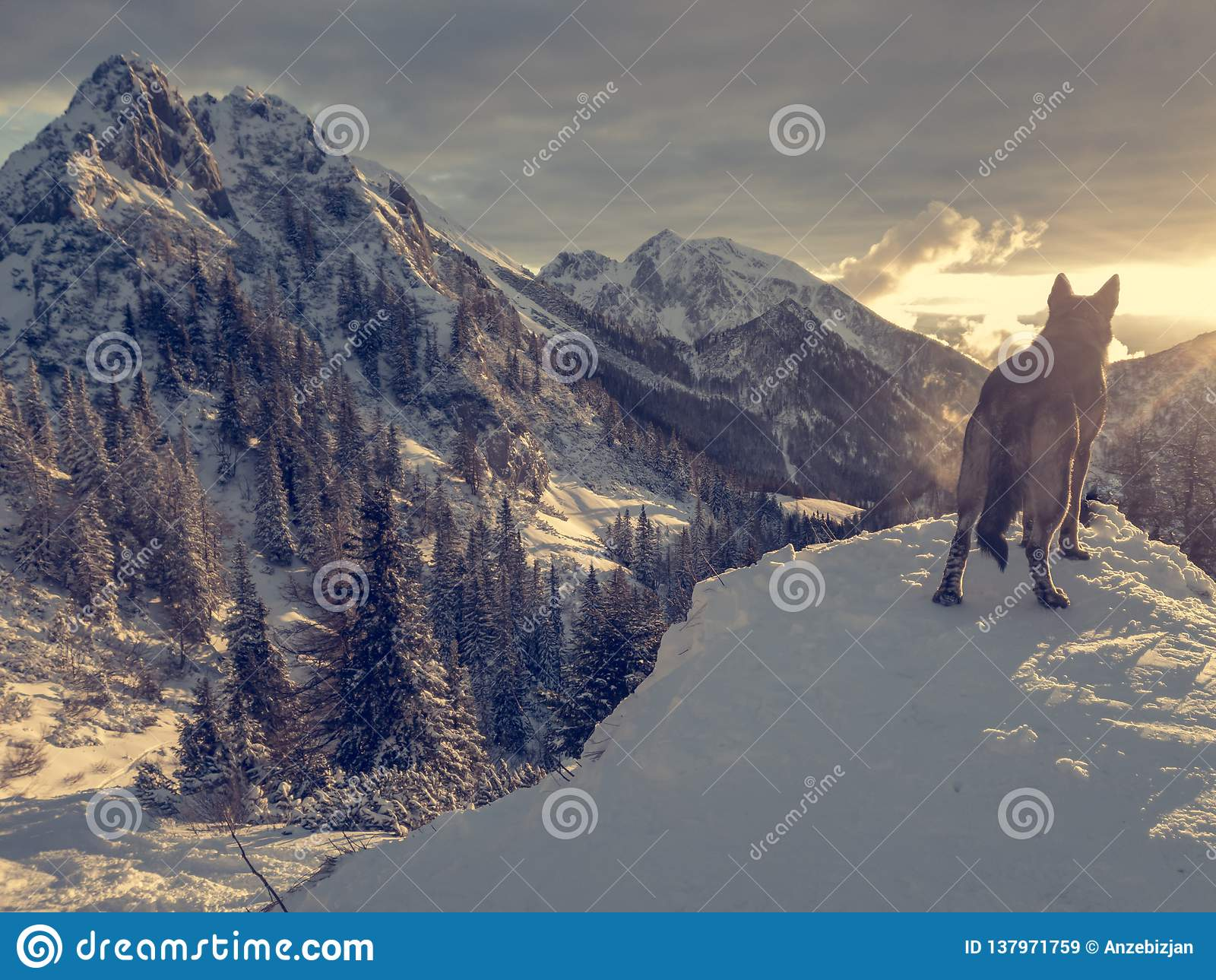 Het spectaculaire die landschap van de de winterberg door zon wordt verlicht te plaatsen