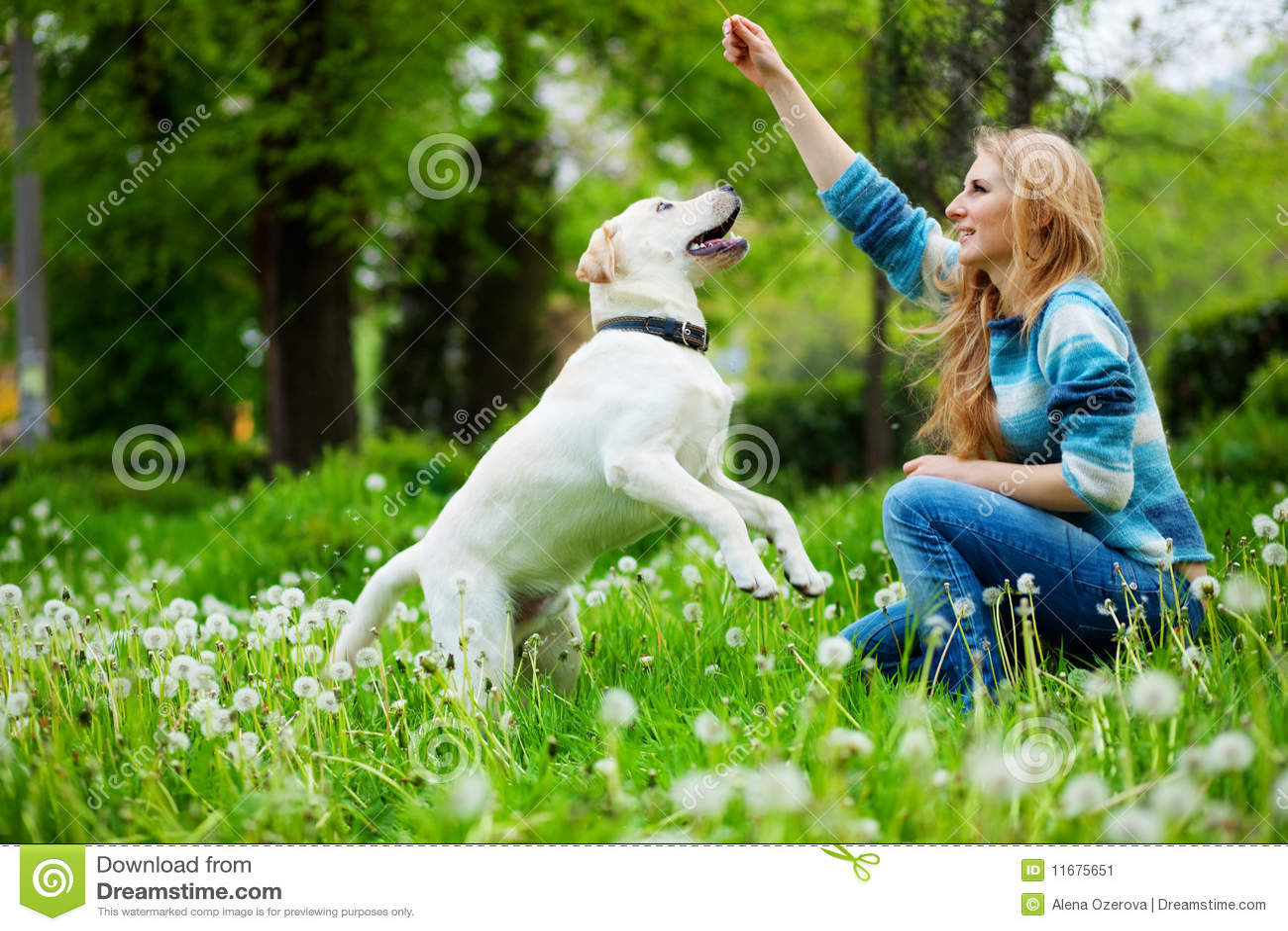 Het spelen met hond