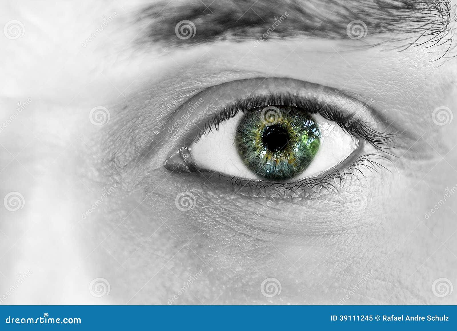 Het staren van Groene 1