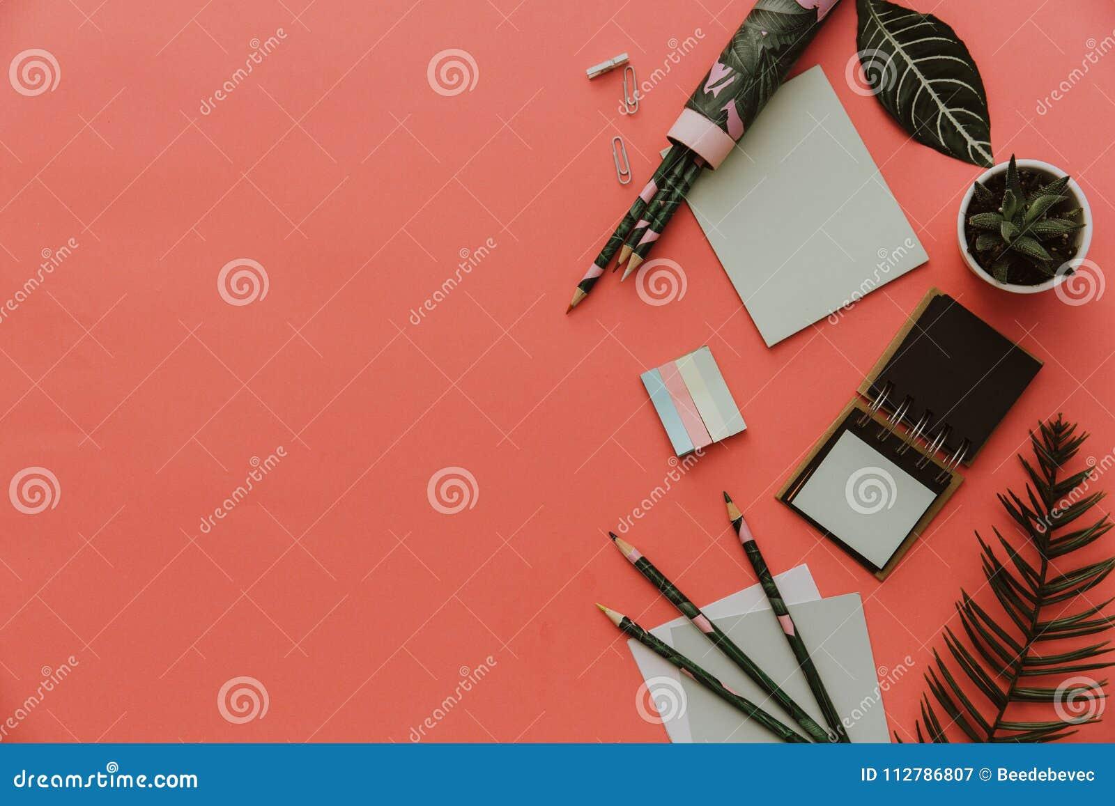 Het stationaire Vlakke concept, legt Foto van Schaar, potloden, document op roze achtergrond