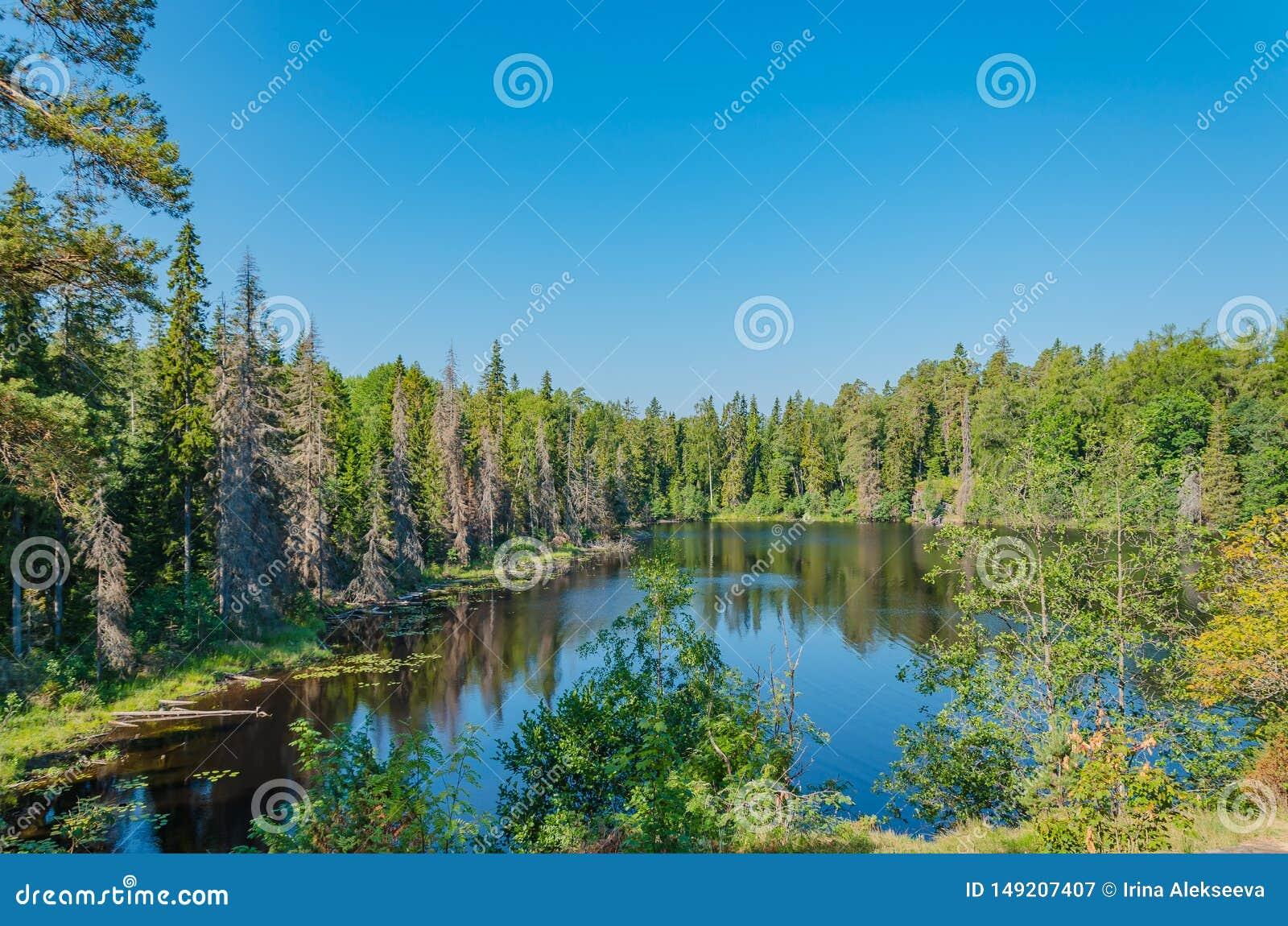 Het stille binnenmeer van het Eiland Valaam De unieke aard van Karelië