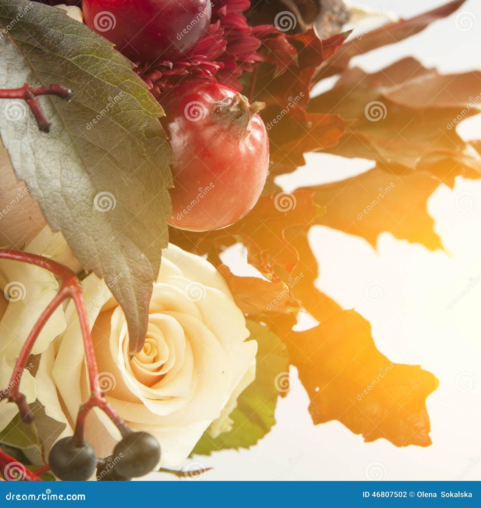 Het stilleven met de herfstappelen, nam en wilde druif toe