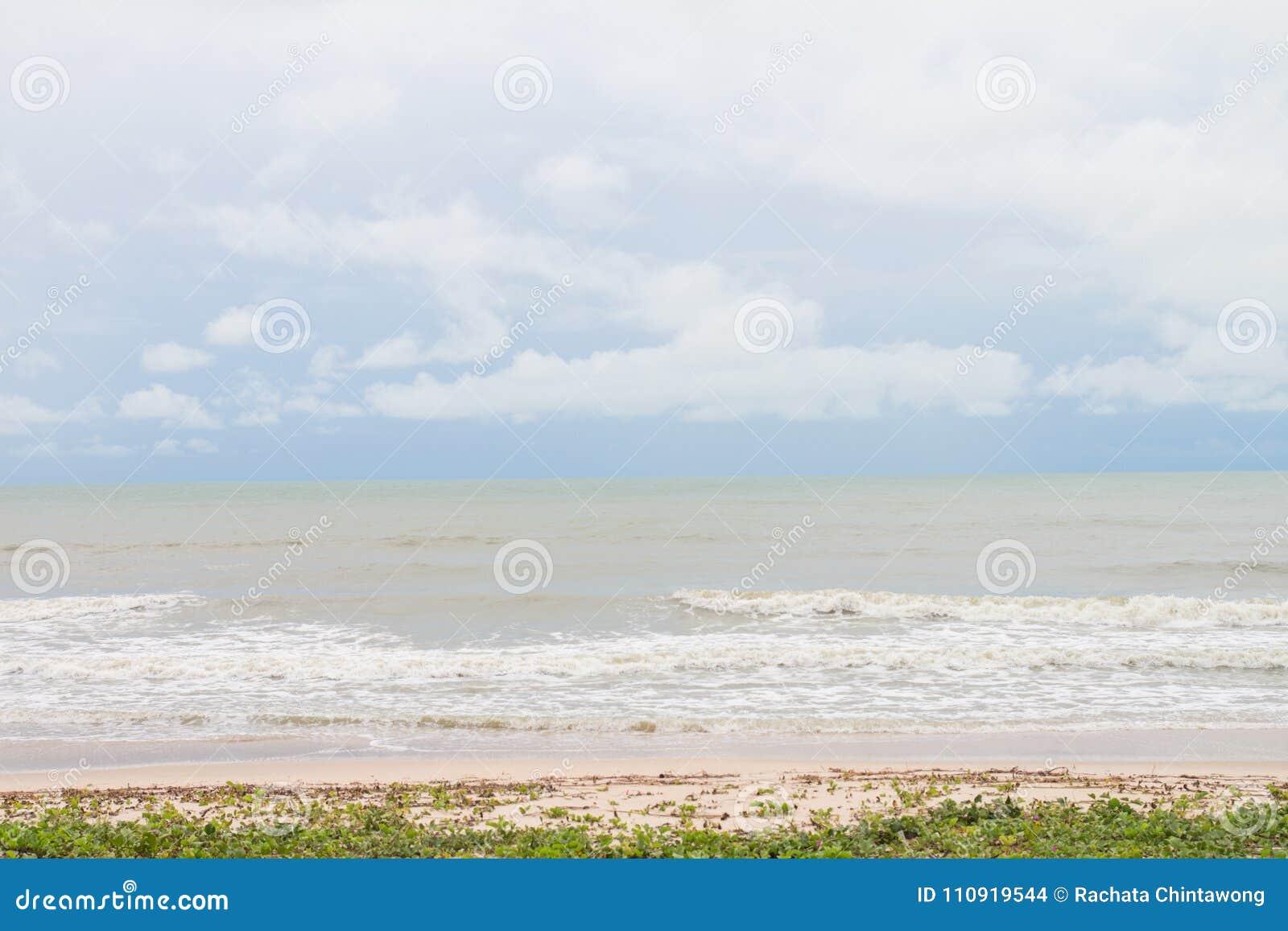 Het strand met gras en het overzees met niemand