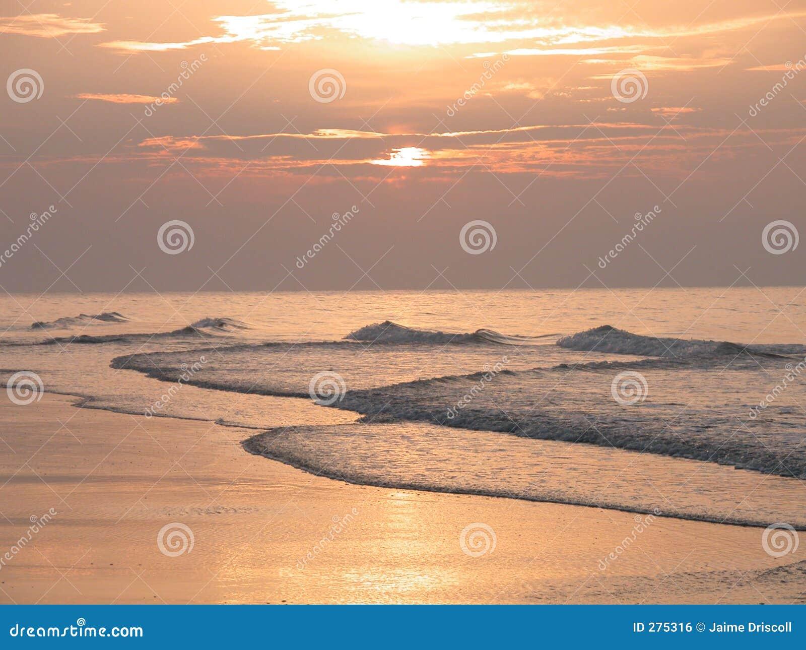 Het Strand van de mirte
