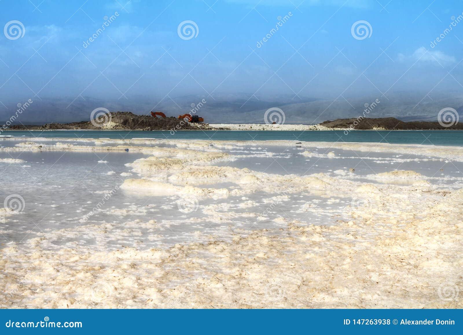 Het strand van het kristalzout op Dode Overzeese kust, Israël