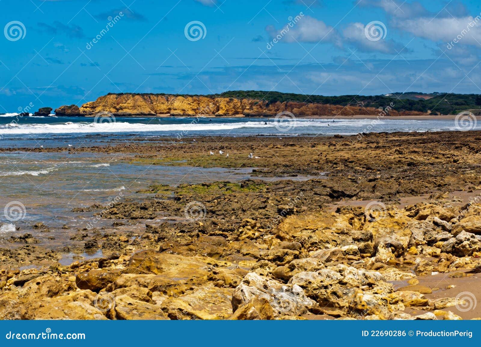 Het strand van Torquay - Australië