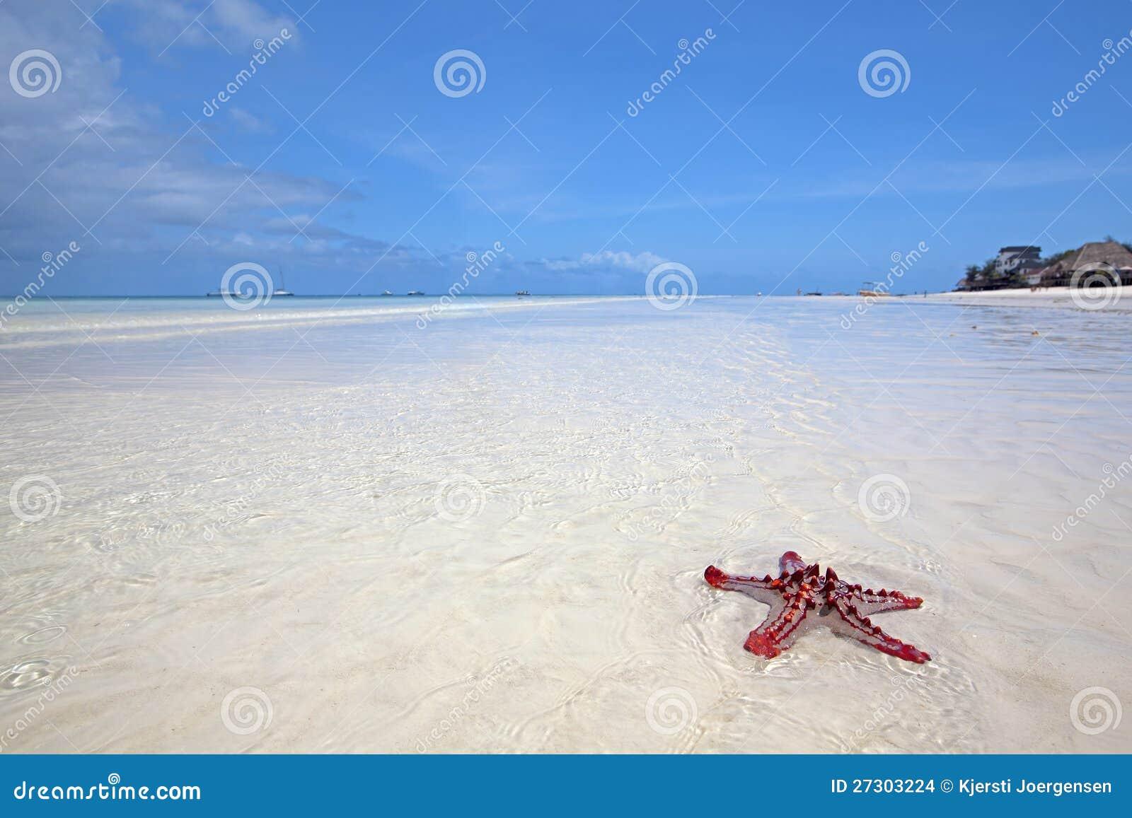 Het strand van Zanzibar