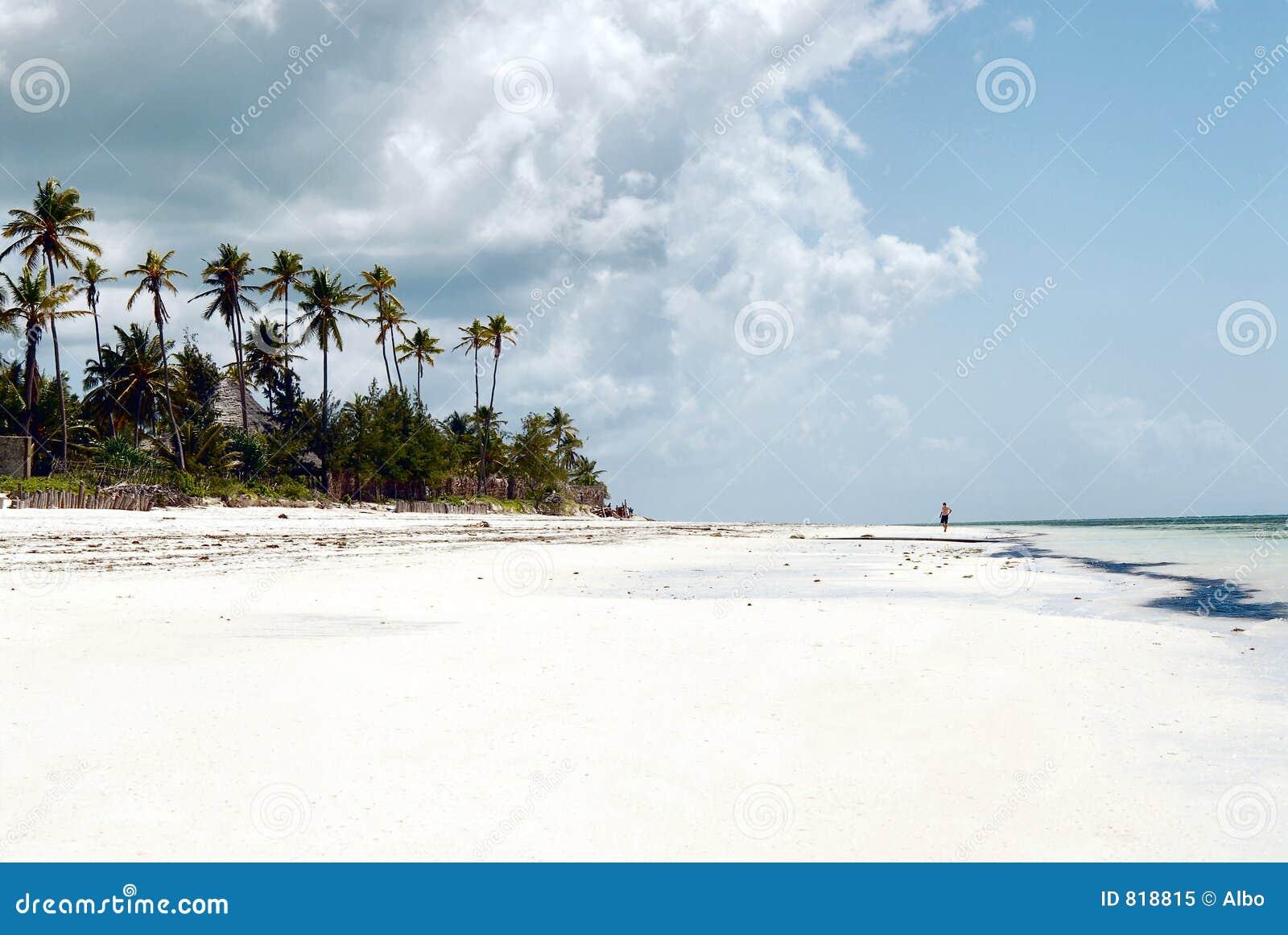 Het strand van Zanzibar tegen dag