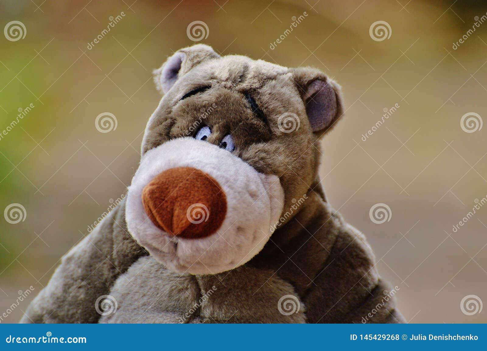 Het stuk speelgoed van zeer mooie kinderen voor jongens en meisjes
