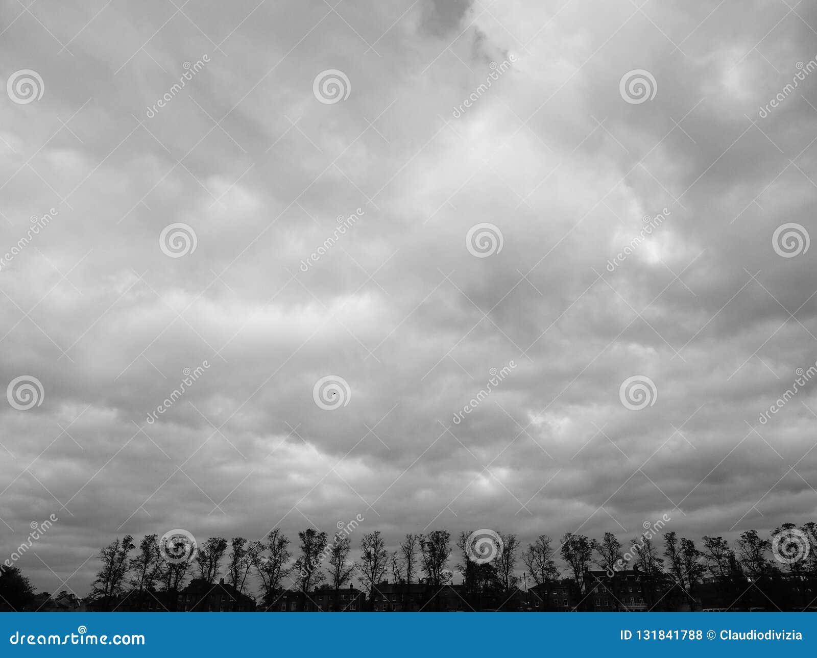 Het Stukpark van Parker in Cambridge in zwart-wit