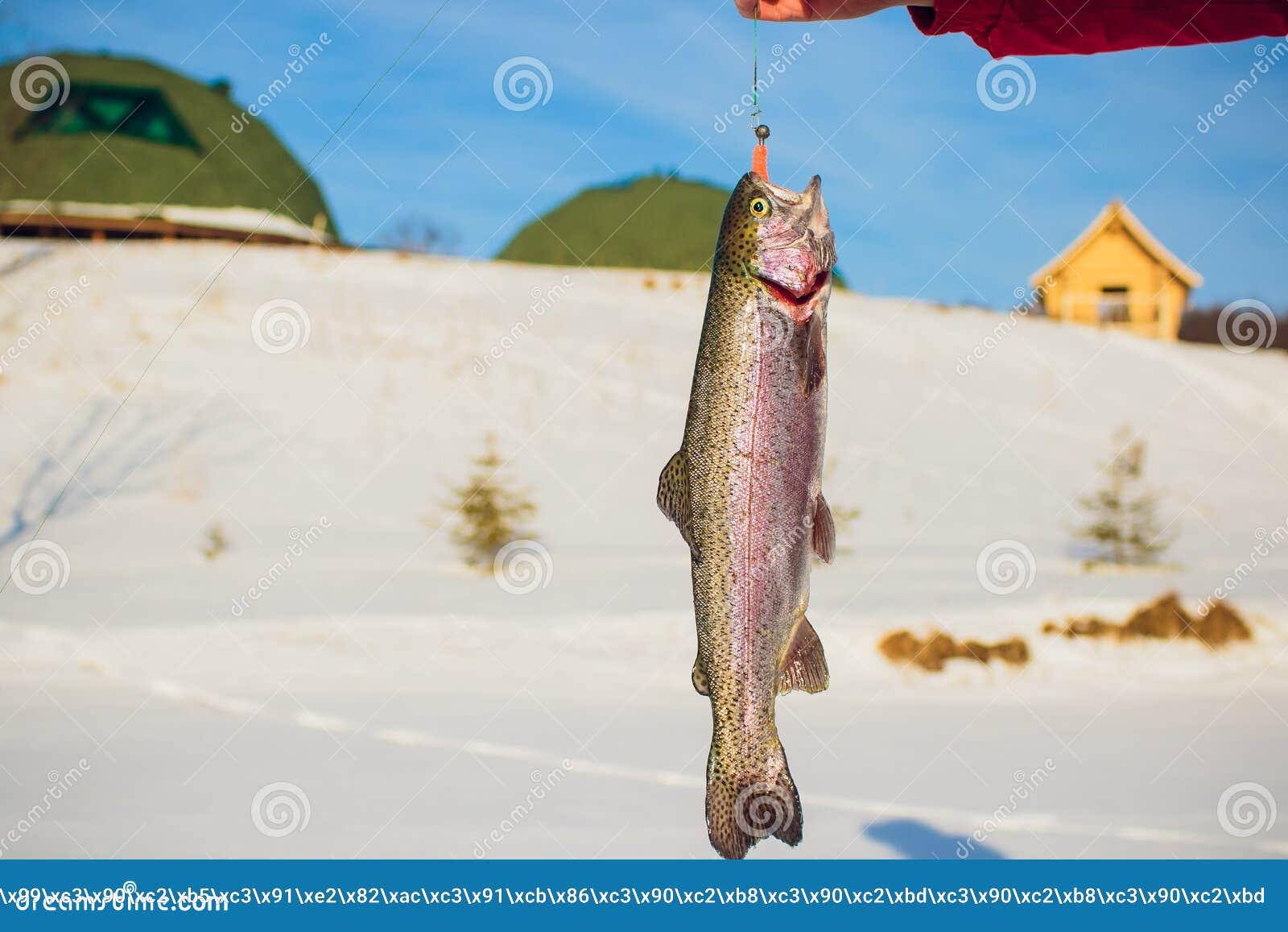 Het succes van een visser op de dag van de koude winter bovenop een bevroren meer