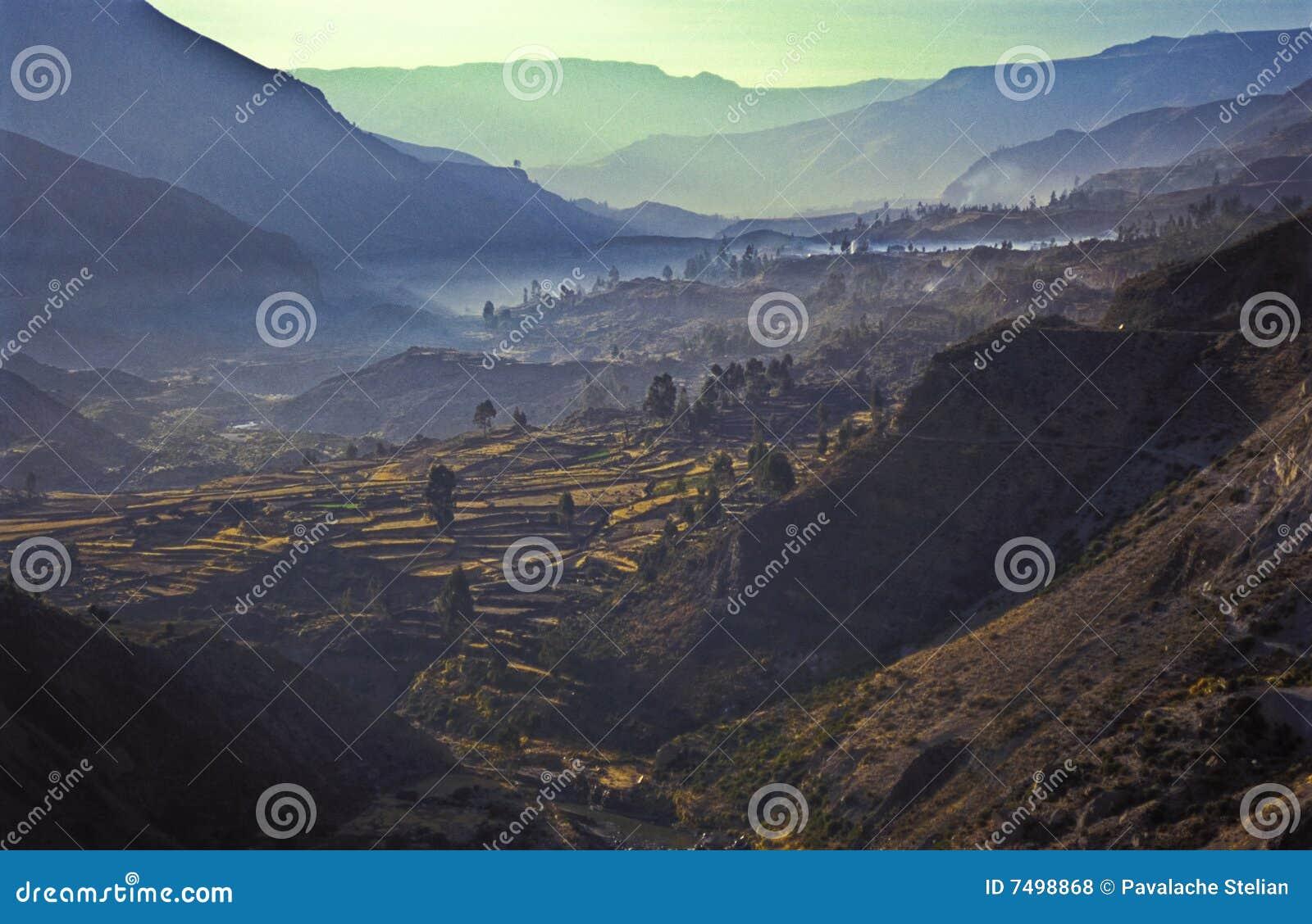 Het terras Valey - Inca van Colca - het huis van Condors #2