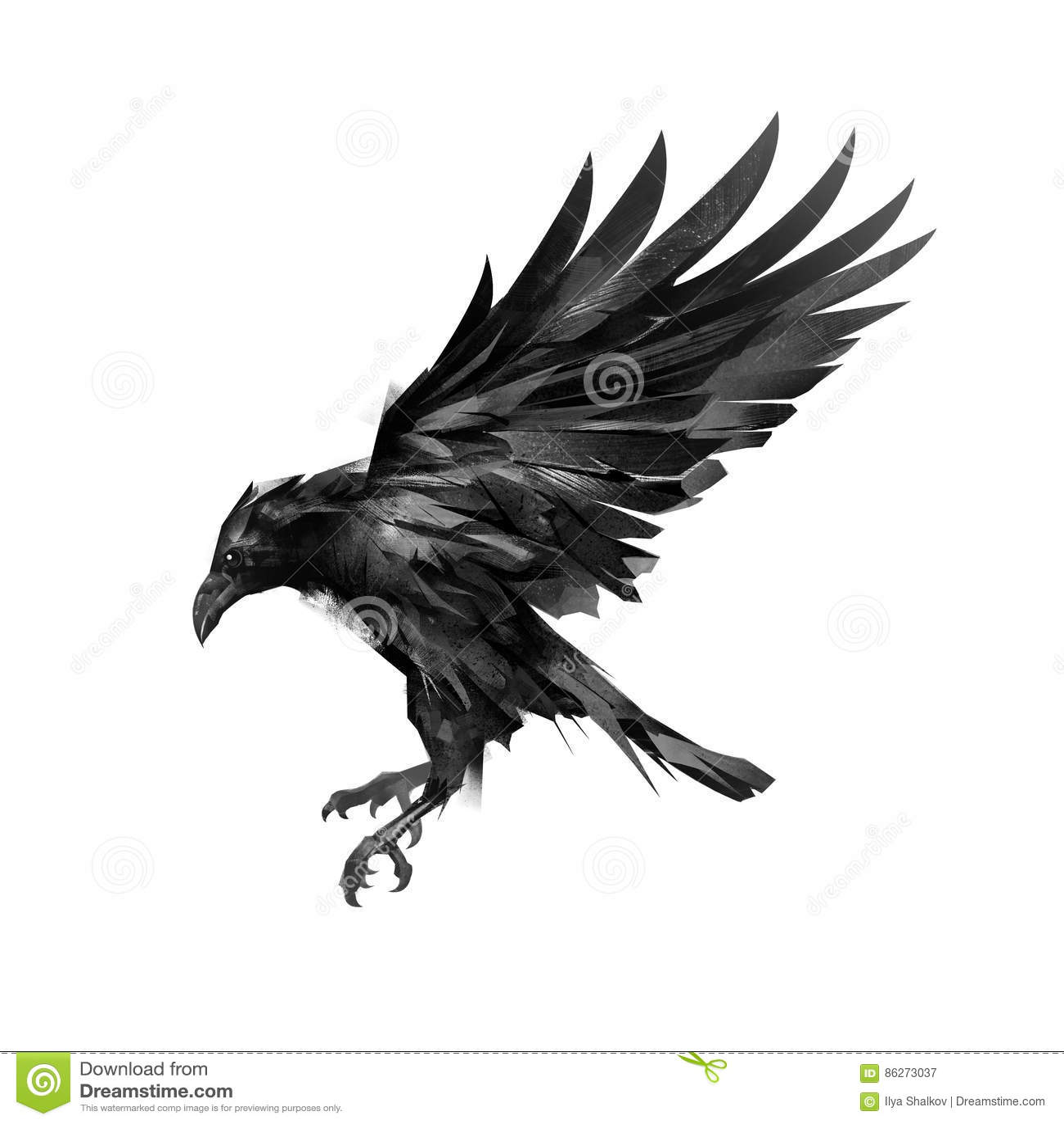 Het trekken van een schets van een vliegende zwarte kraai op een witte achtergrond