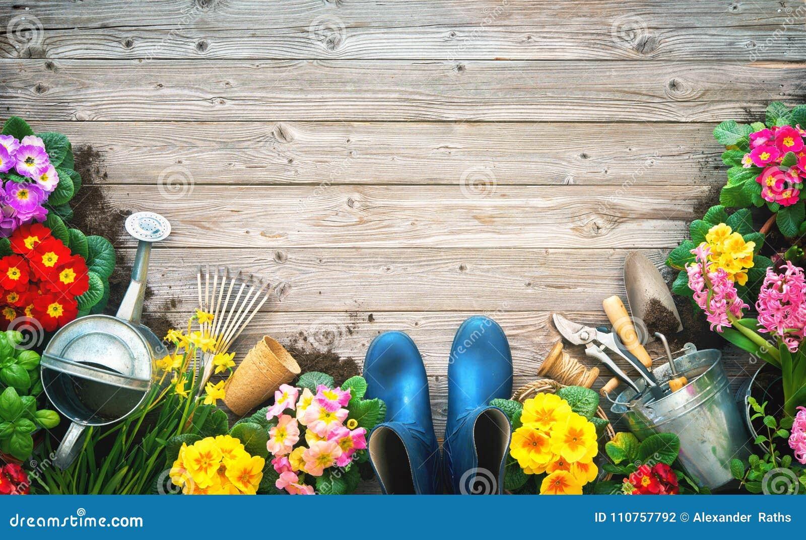 Het tuinieren hulpmiddelen en de lentebloemen op het terras
