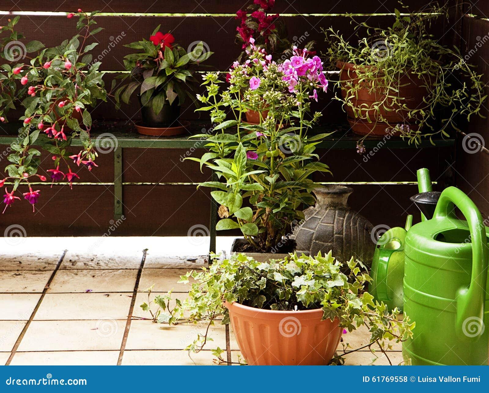 Tuinieren Op Balkon : Het tuinieren op het balkon stock foto afbeelding bestaande uit