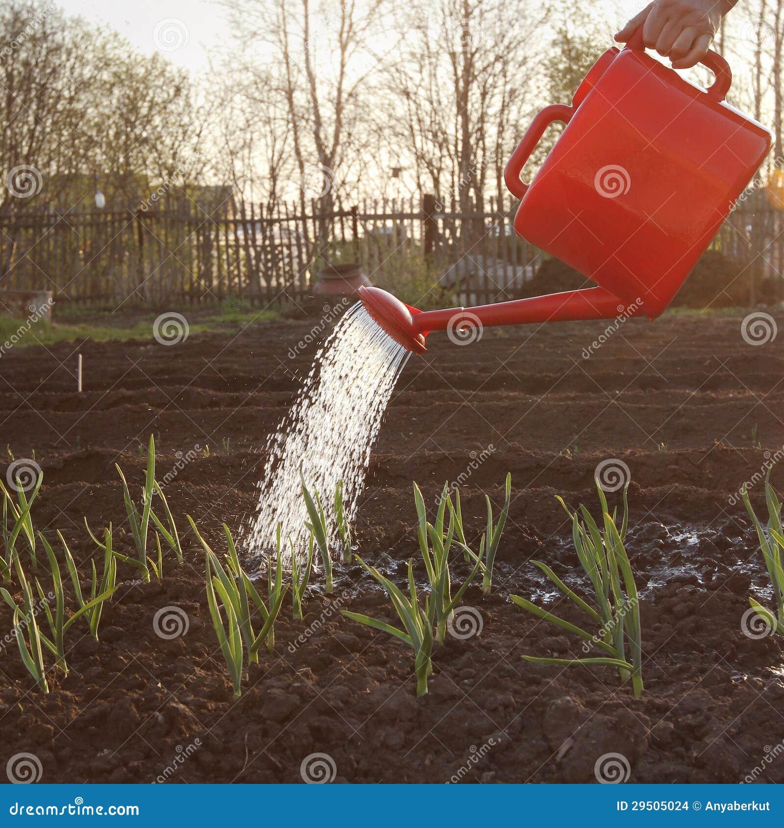 Het tuinwerk