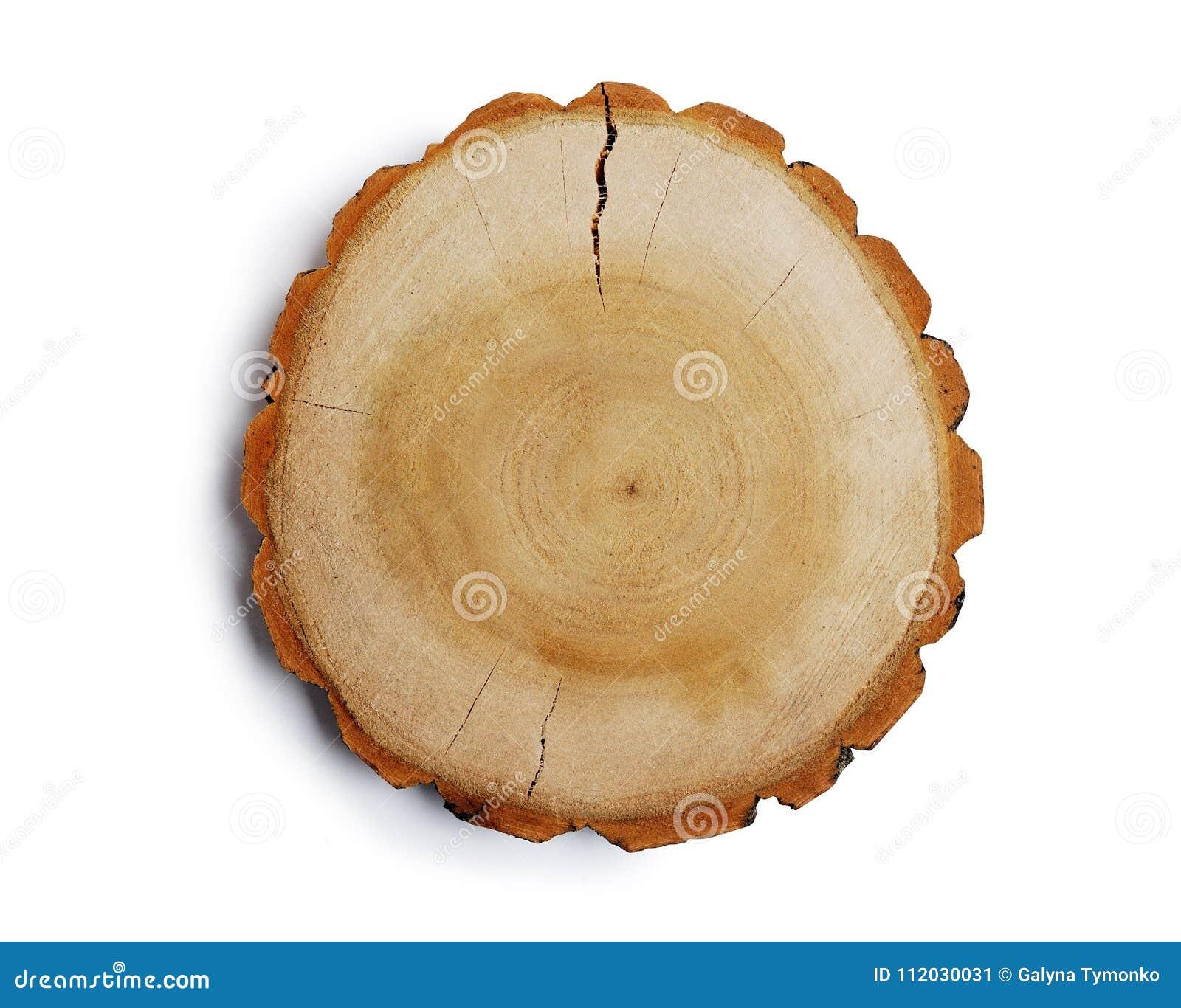 Het uitstekende grote cirkelstuk van houten dwarsdoorsnede met de textuurpatroon van de boomring en de barsten isoleerden het kni